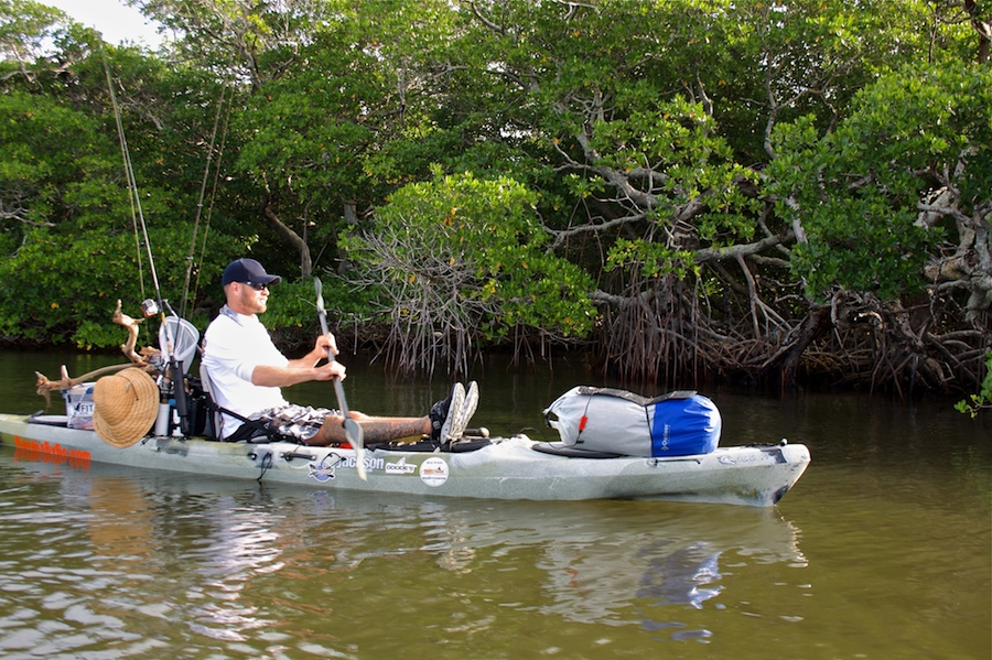 mangrove shoreline