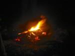 redfish on the coals